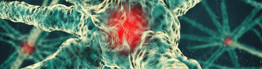 Nerve Cell Masthead