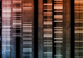header-DNA-gel