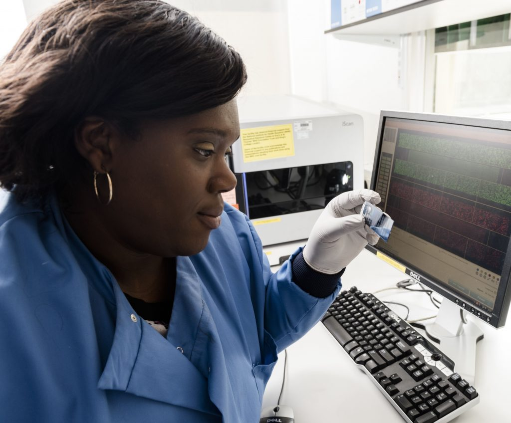 Researcher looking at genomic data
