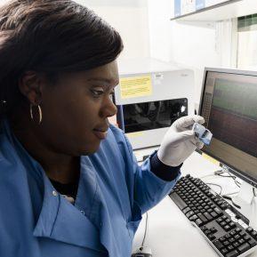 image-genomics-Researcher-data-analysis