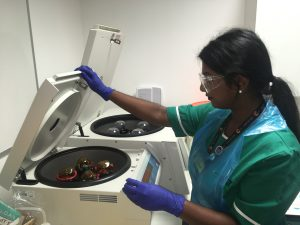 Clinical trial coordinator Srivani loading samples from clinic into a machine