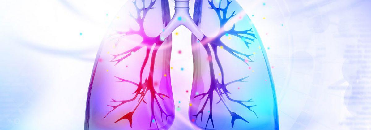 lungs in purple blue