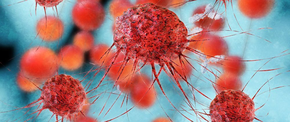 blood immune cell