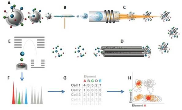 image-flow-tech-CYTOF-diagram