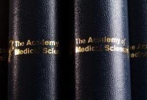news-280416-Academy