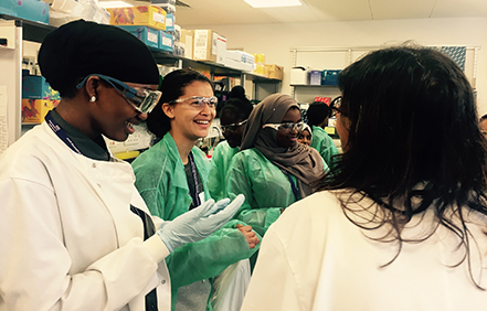 Students extracting DNA from strawberries Summer School 2017