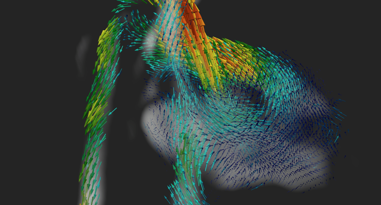 4D image of a foetus' heart, showing a 3D image with changes over time.